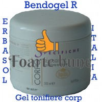 Bendogel R