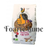 Cereale Power Fruit Cruch, Royal Green, 375 gr